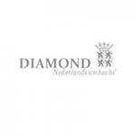 diamond wolters-juweliers-coevorden-emmen