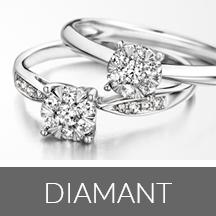 Diamant Wolters Juweliers Coevorden Emmen